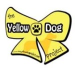 YellowDogProject